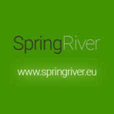 Riwax® Carline Spraypesuaine ES, vaahtoestetty, tunneli-, pyörivään & korkeapaineiseen autonpesuun, 20L, 02652-20